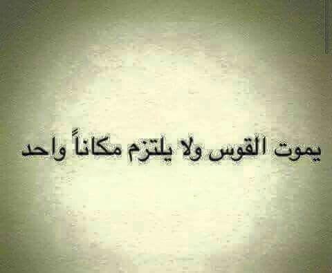 برج القوس Funny Arabic Quotes Arabic Quotes Quotes