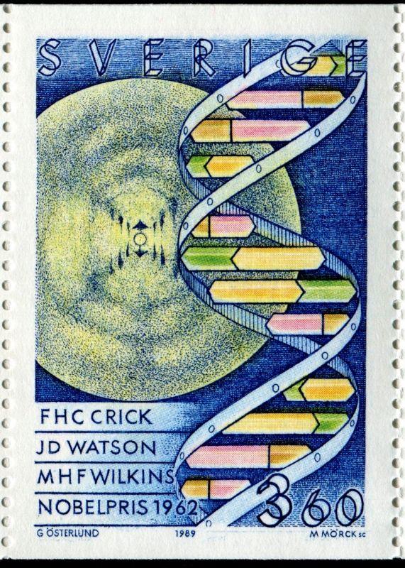 Dna The Double Helix Genes Genetics Stamp Community Forum Stamp Postage Stamp Art Postage Stamps