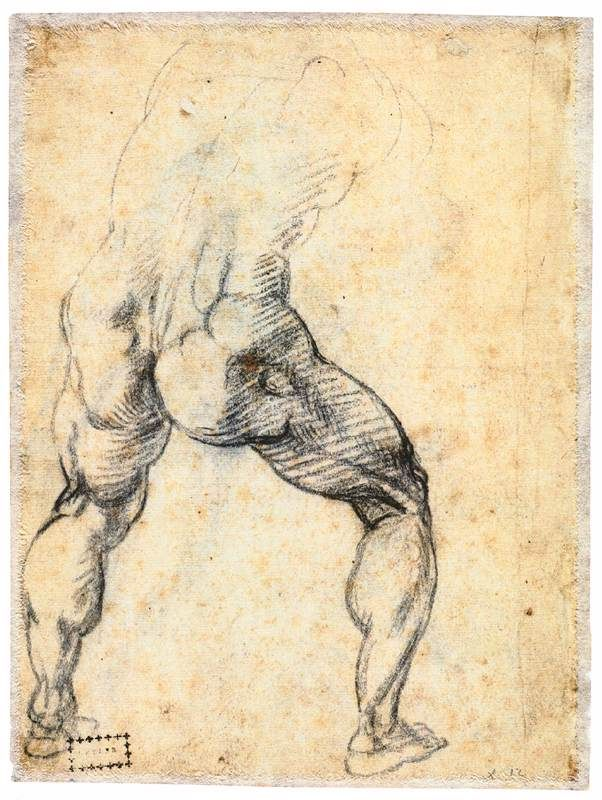 MICHELANGELO Buonarroti -  Male Nude, Seen from the Rear (verso) 1534-36 -  Black chalk on brown paper, 242 x 182 mm /  Teylers Museum, Haarlem