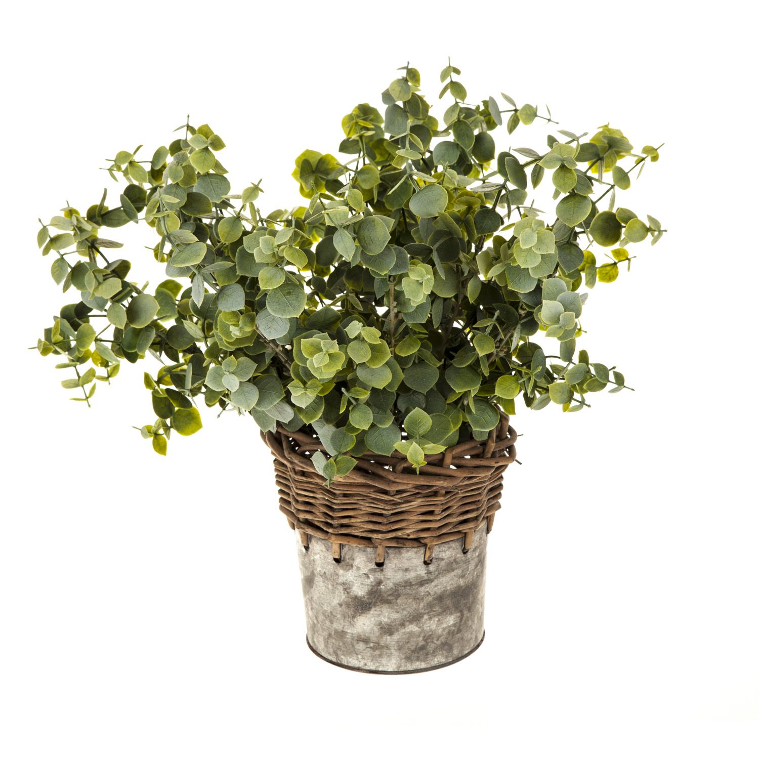 Eucalyptus In A Galvanised Pot Small artificial plants