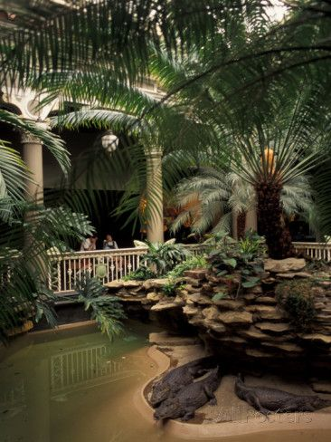 Beautiful Old Reptile House At Forest Park St Louis Zoo St Louis