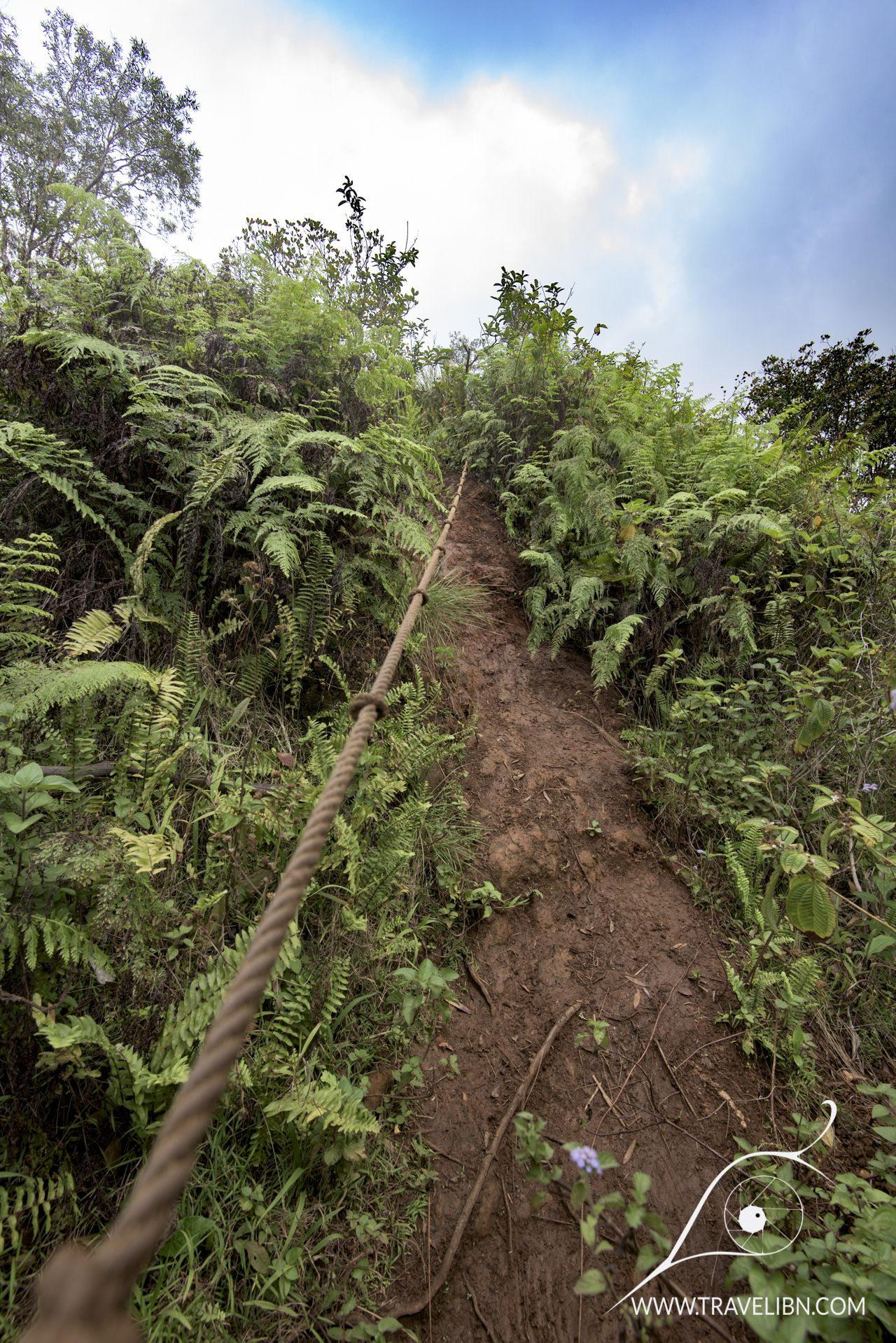 Top 10 most amazing hikes on Kauai, the Garden Isle | From our site ...