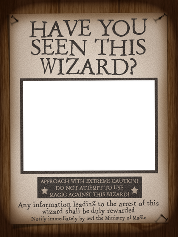 Filler Card/Photo Frame - WWoHP - Have You Seen This Wizard? - Harry ...