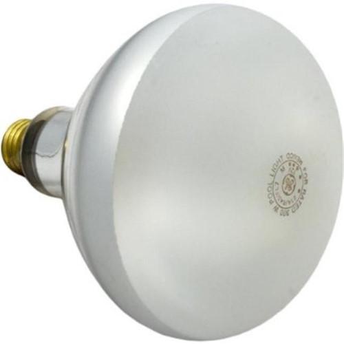 Pentair Aquatic Systems 79101900 300-watt 12-volt Bulb