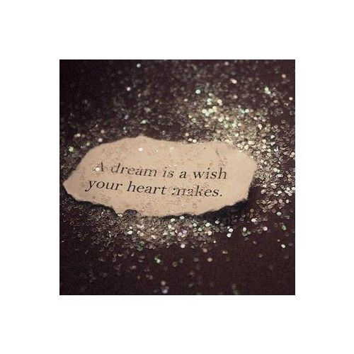 A Dream Is A Wish Your Heart Makes Disney Obsession Dream