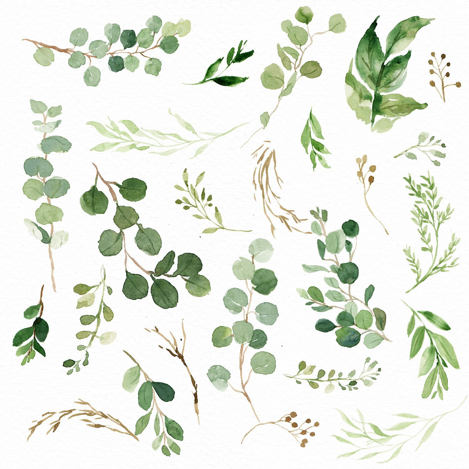 Elements De Feuille Verte A L Aquarelle Petit Ensemble Greenery