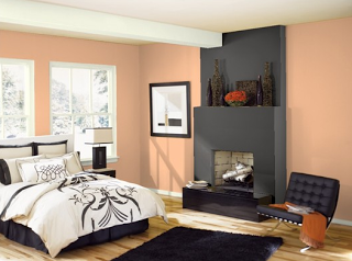 A Color Specialist In Charlotte: A Healthy Dose Of Color. Salmon, Itu0027s Sweet