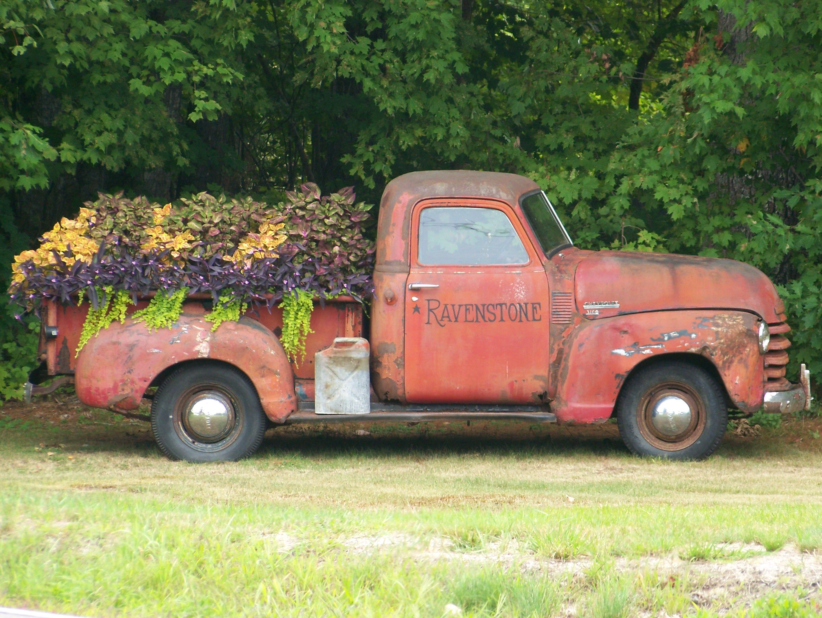 Antique truck with flower filled bed
