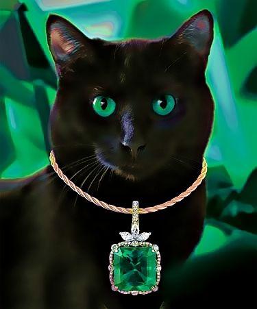 couleur vert emmiaou chat chat domestique et chatons. Black Bedroom Furniture Sets. Home Design Ideas