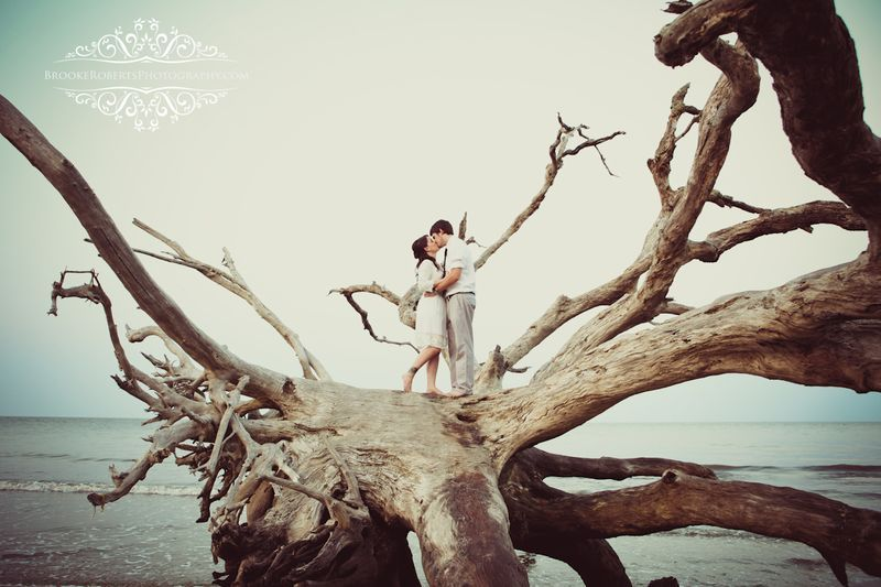 Driftwood Beach Jekyll Island Ga Wedding Photographers Driftwood Beach Beach Wedding Photos Wedding Venues Beach