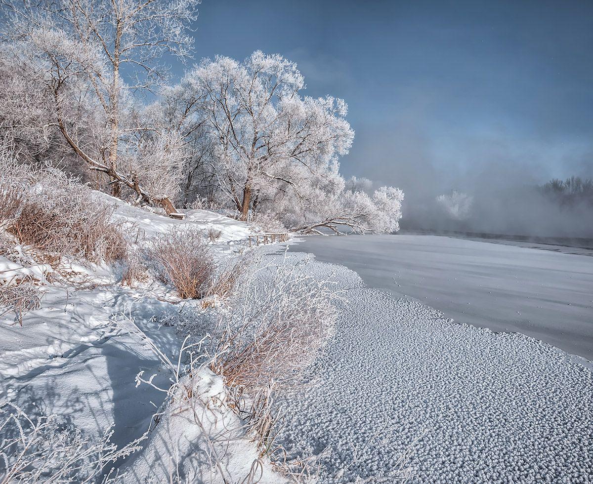 Анимационные картинки природа болото фотопечатью, выполнен