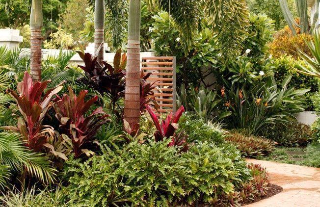 Small Tropical Garden Ideas in Melbourne Australian ...