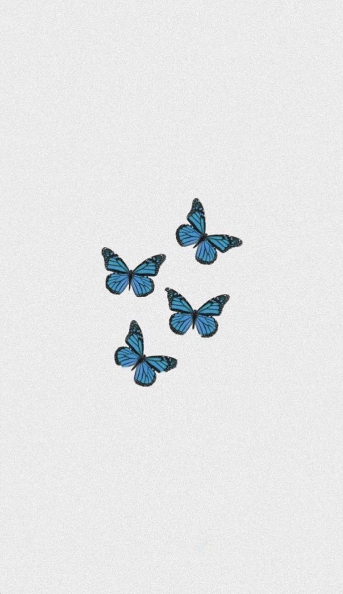 butterflies addiction  uploaded by Little L on We Heart It