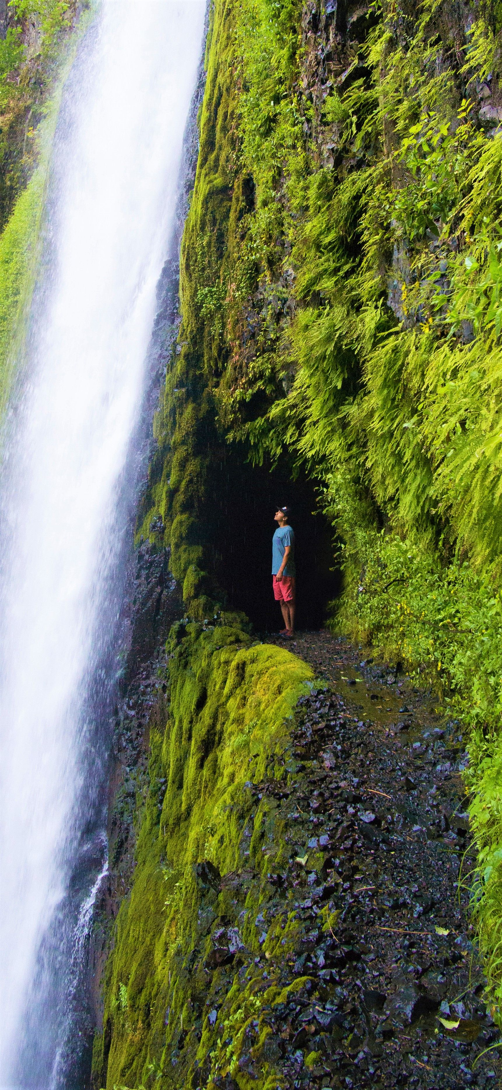 Guide To The Best Waterfalls Near Portland Oregon  Oregon Travel