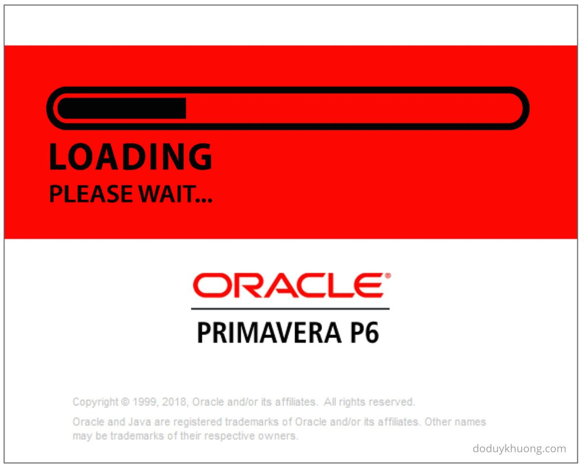 Primavera P6 Sql Server Database Slow Loading Data Performance Issue