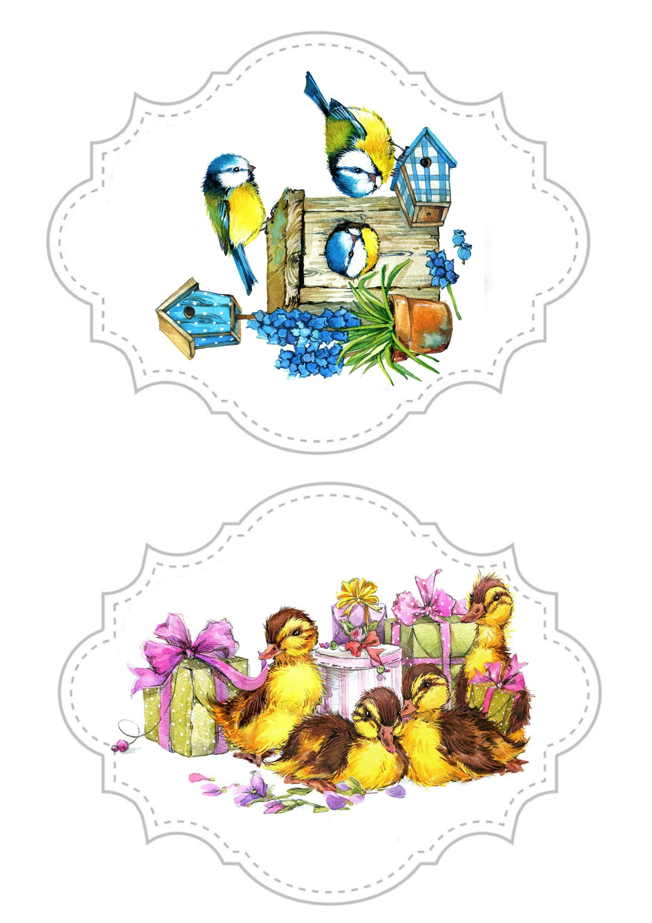 Spring   embalagens   Pinterest   Etiquetas, Animales del bosque y ...