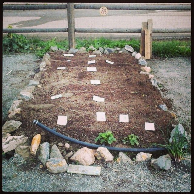 """""""I managed to get a few seeds planted before the rain started again. Really looking forward to some sunshiney days! Anyway, stay tuned for big things from…"""""""