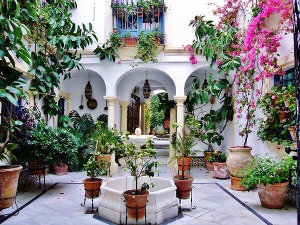 patios cordobeses - Buscar con Google red bugambilias in 2018