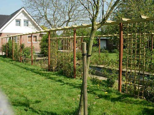 Pergola2 tuin pinterest tuin - Pergola klimplant ...