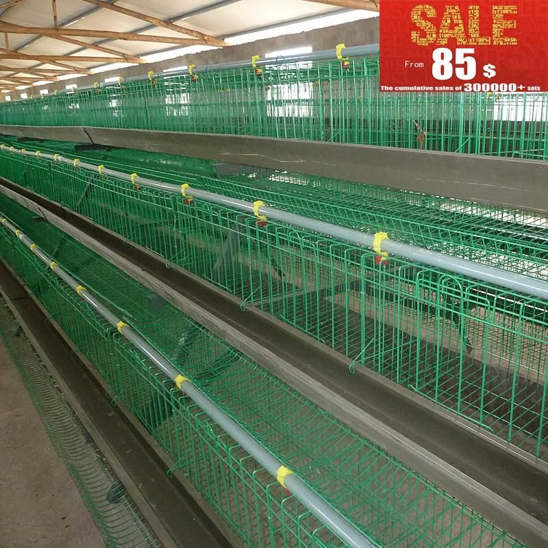 Chicken Farm Project Poultry Farming Equipment For Sale Poultry Farm Chicken Farm Farm Projects