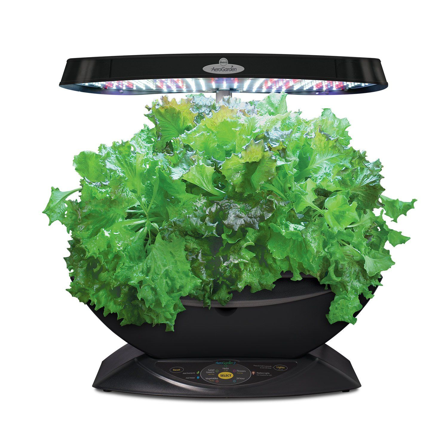 Top 15 Best Indoor Herb Garden Kits Reviews 2019(Updated
