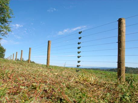 Electric Livestock Containment Fence Installer Electric Fence Farm Fence Electricity