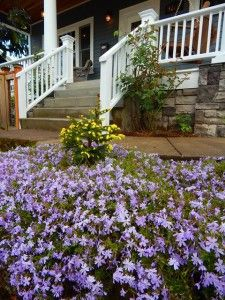"""Landscaping, steps to SE Portland Home from """"8 Tips to Getting the Highest Appraisal Possible for Your Home"""" blog post: http://www.dannipdx.com/appraisal-tips/"""