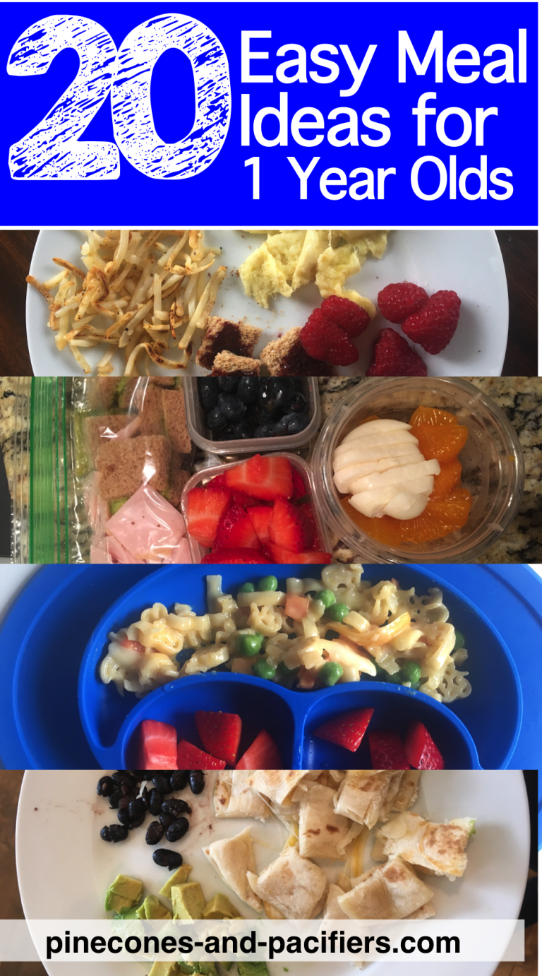 20 Easy Meal Ideas for 1 Year Olds  Pinecones and Pacifierseasy