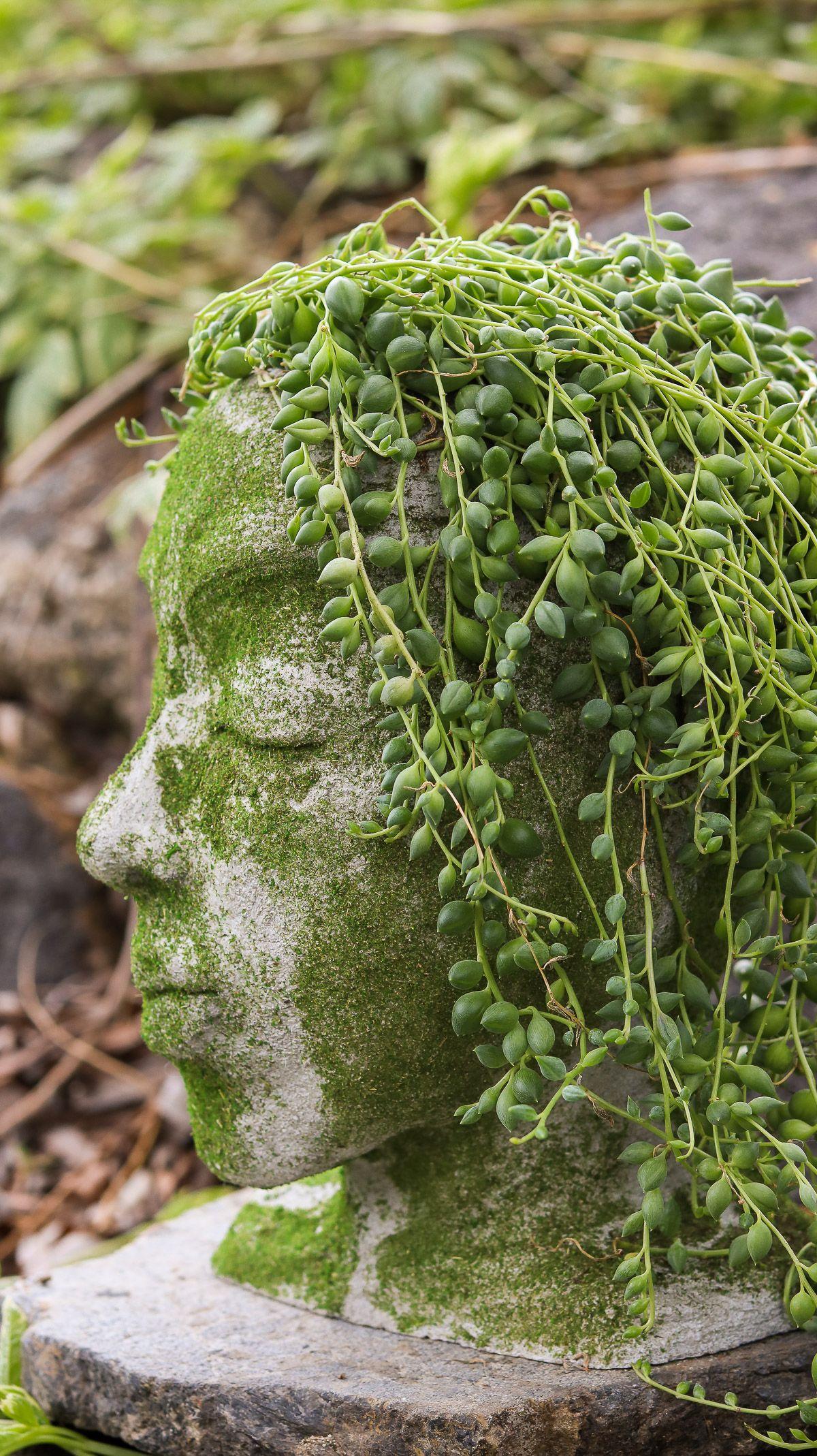 Diy head planter using concrete garden diys head