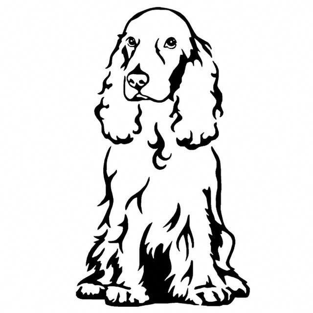 Hund Malen Lassen Das Musst Du Uber Die Verschiedenen