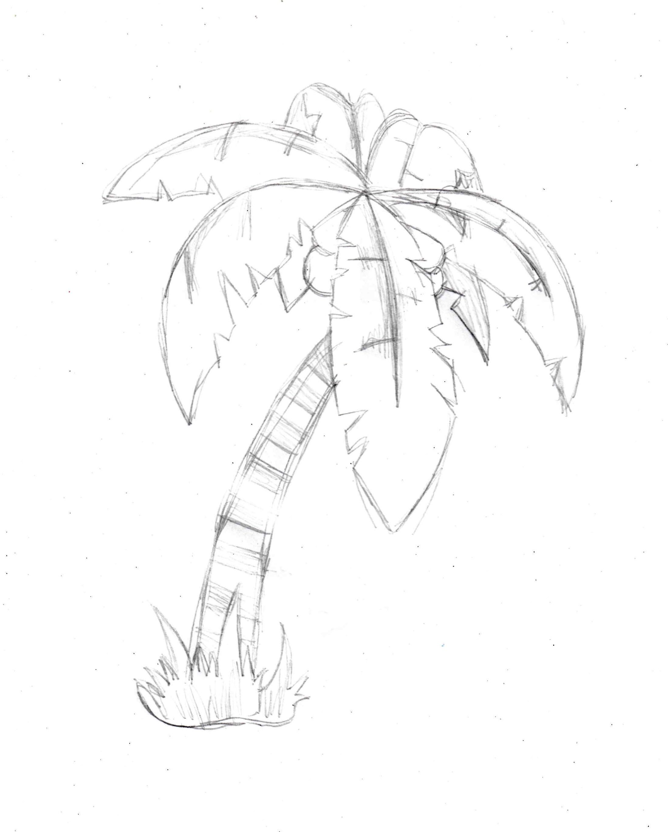 Summer is here and we know you all want to learn how to draw a palm ...