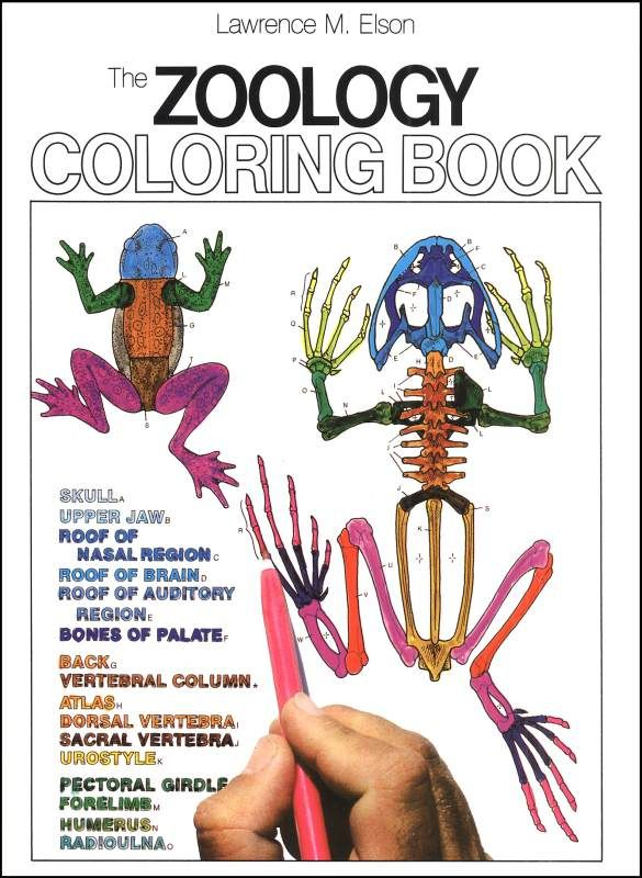 Zoology Coloring Book | Main photo (Cover) | Science - Homeschool ...