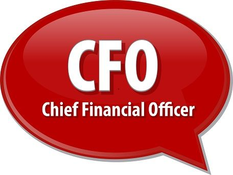 Bookkeeping 101 Santa Rosa Need Chief Financial Officer Do You