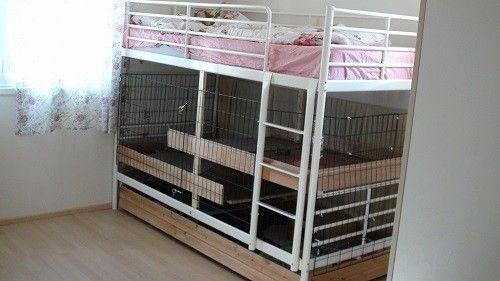 Pen Indoor Rabbit House
