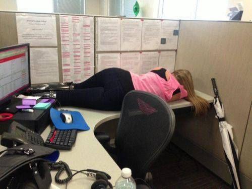 You Had One Job Falling Asleep At Work