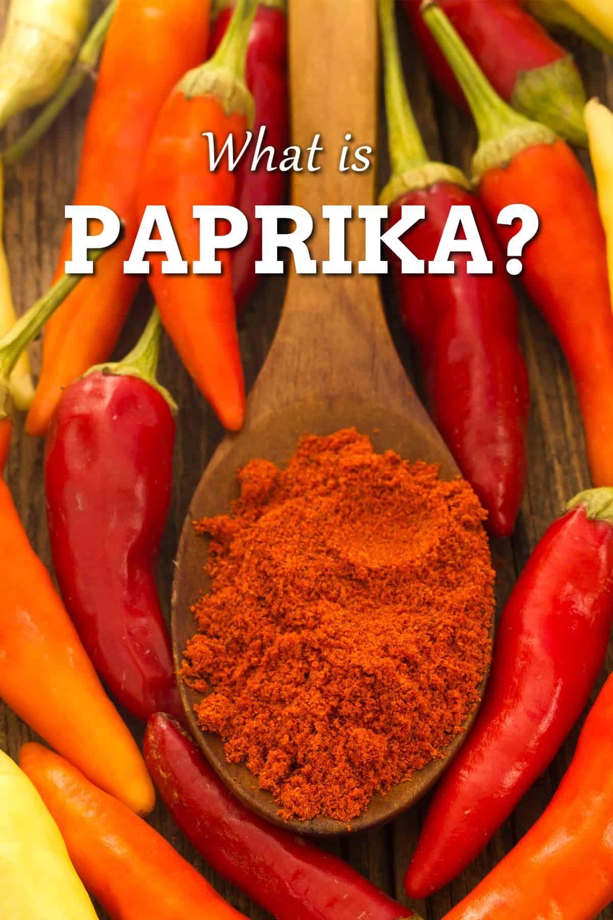 Paprika a Popular Chili Powder Stuffed peppers, Stuffed