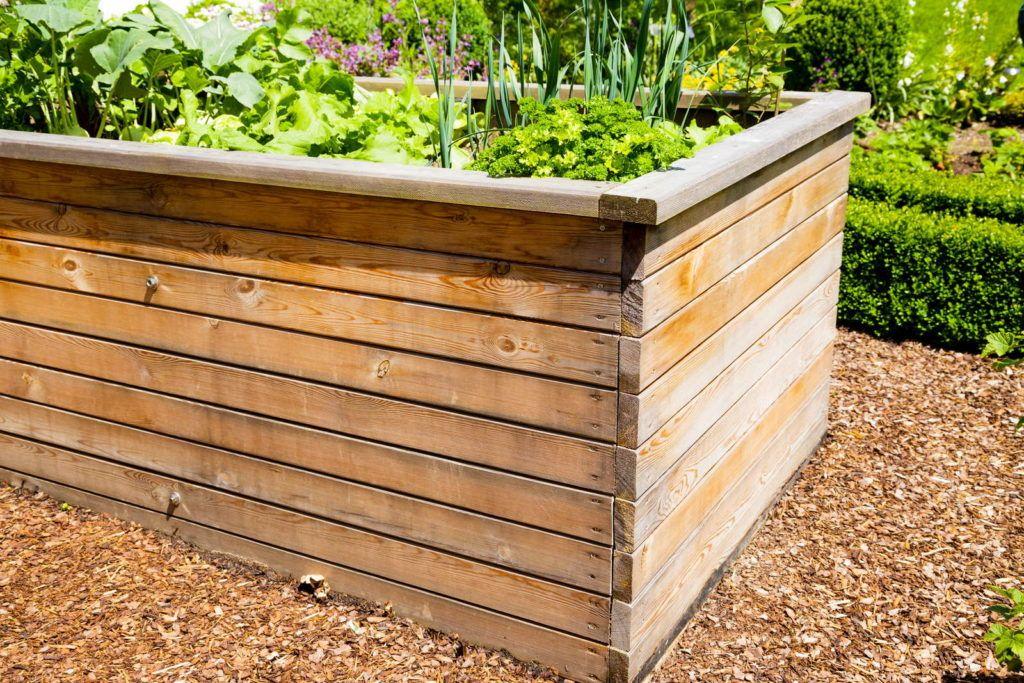 10 Tipps Fur Das Perfekte Hochbeet Plantura In 2020 Hochbeet Schadlinge Im Garten Hochbeet Bepflanzen