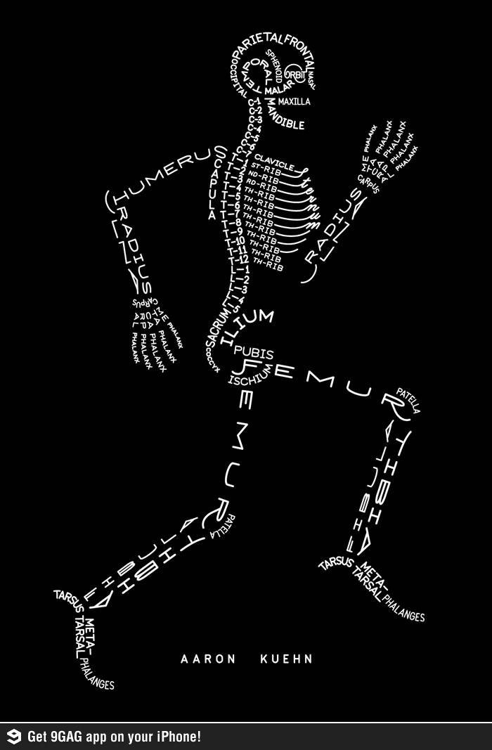 A good way to remember the names of the bones. | Science Lessons and ...