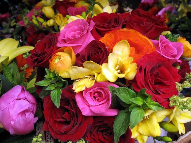 Imagenes Flores Caricatura Buscar Con Google: Imagenes De Rosas En Hd - Buscar Con Google