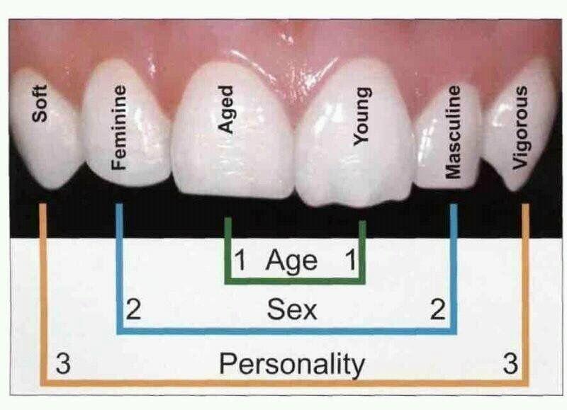 O que seus dentes revelam sobre você! #dicadedentista #saudeodontologica  #dentista #machadodecarvalho #estetica #machadodecarvalhoodontologiadereferencia #Dr.EduardoMAchadodeCarvalho