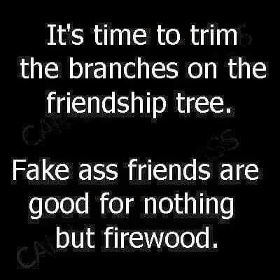 fake ass friends quotes