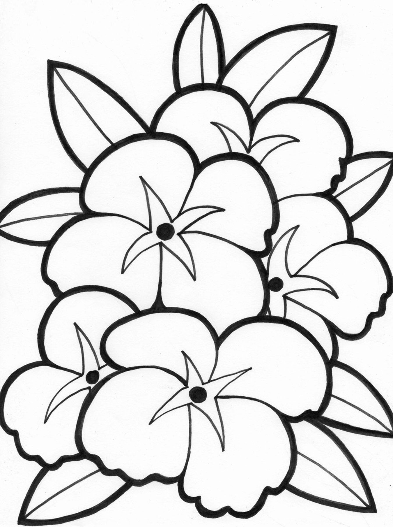Coloring Flowers For Kids Inspirational Free Printable Flower Coloring Pages For K Summer Coloring Pages Printable Flower Coloring Pages Flower Coloring Sheets
