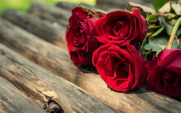 Herunterladen hintergrundbild rote rosen blumenstrau rosen rot herunterladen hintergrundbild rote rosen blumenstrau rosen rot blumen romantik thecheapjerseys Images