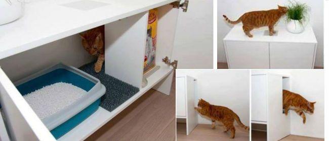 comment concevoir une liti re de chat d co miaou pinterest comment concevoir chats et. Black Bedroom Furniture Sets. Home Design Ideas