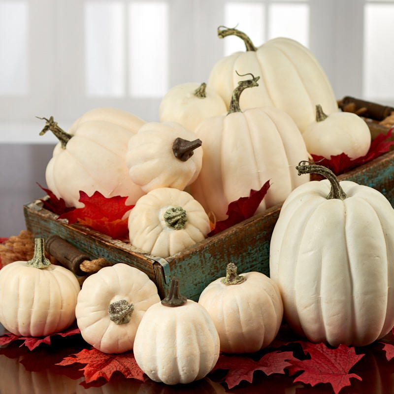 Assorted Harvest White Artificial Pumpkins Fall And Halloween Primitive Decor In 2019 Artificial Pumpkins Pumpkin Decorating Pumpkin