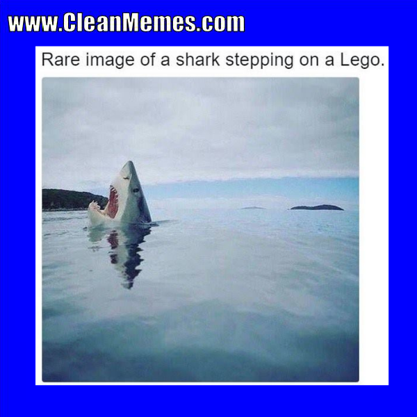 Pin By Clean Memes On Clean Memes Clean Memes Rare Images New Memes