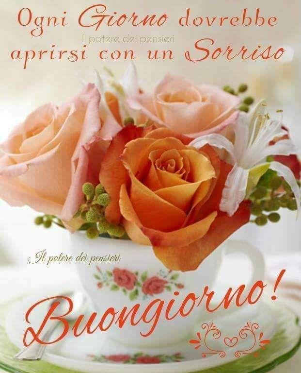 Buongiorno Buongiorno Buonanotte Good Morning E Buongiorno