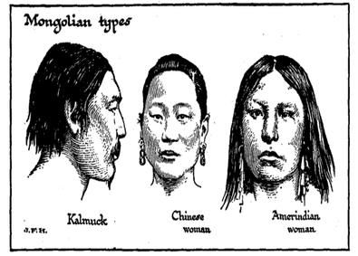 Mongolian type