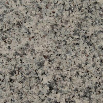 Stonemark 3 In X 3 In Granite Countertop Sample In Azul Platino