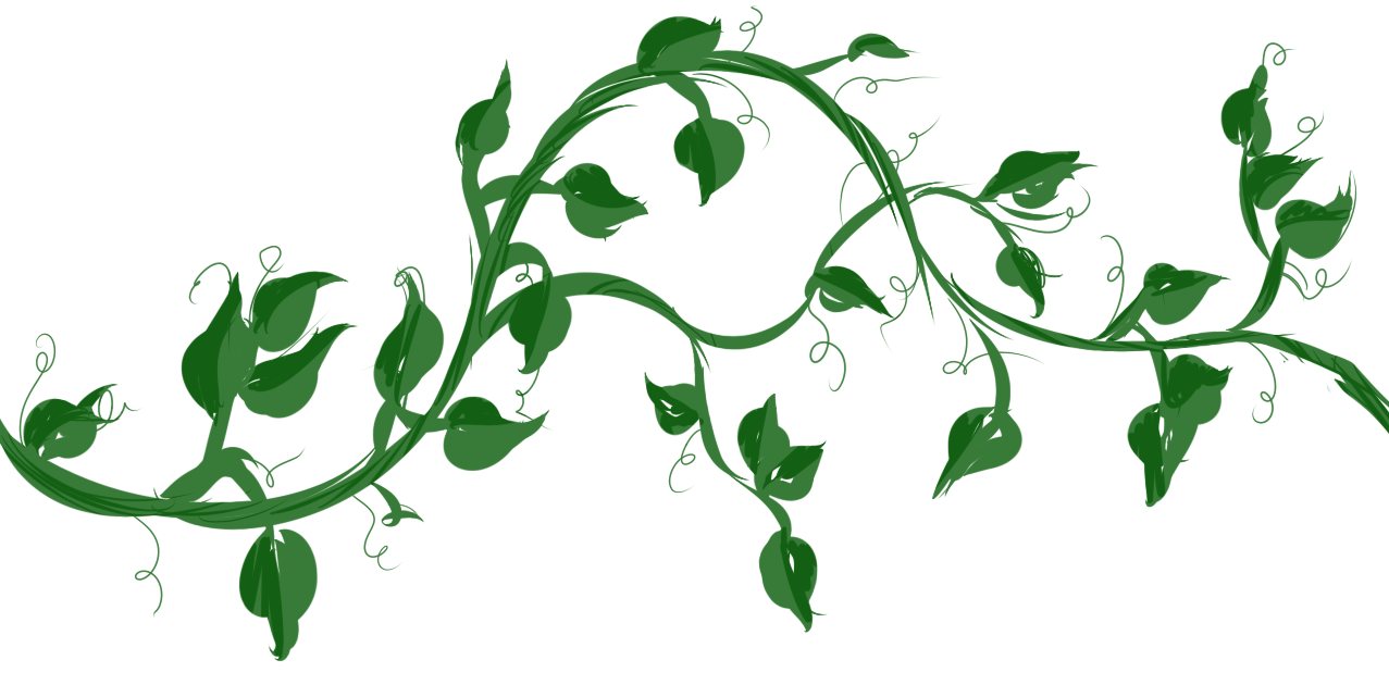 vine with maple like leaves drawing - Google zoeken   Tattoo ideas ...